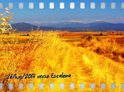 20130726-201131.jpg